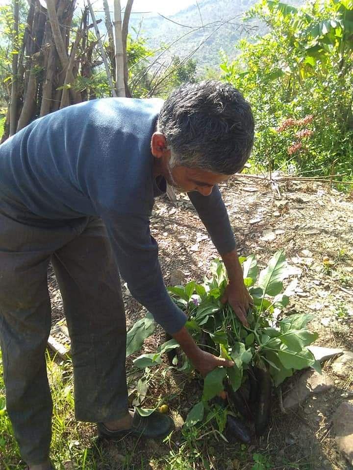 Farmer from Satna Ramlotan Kushwaha in his farm