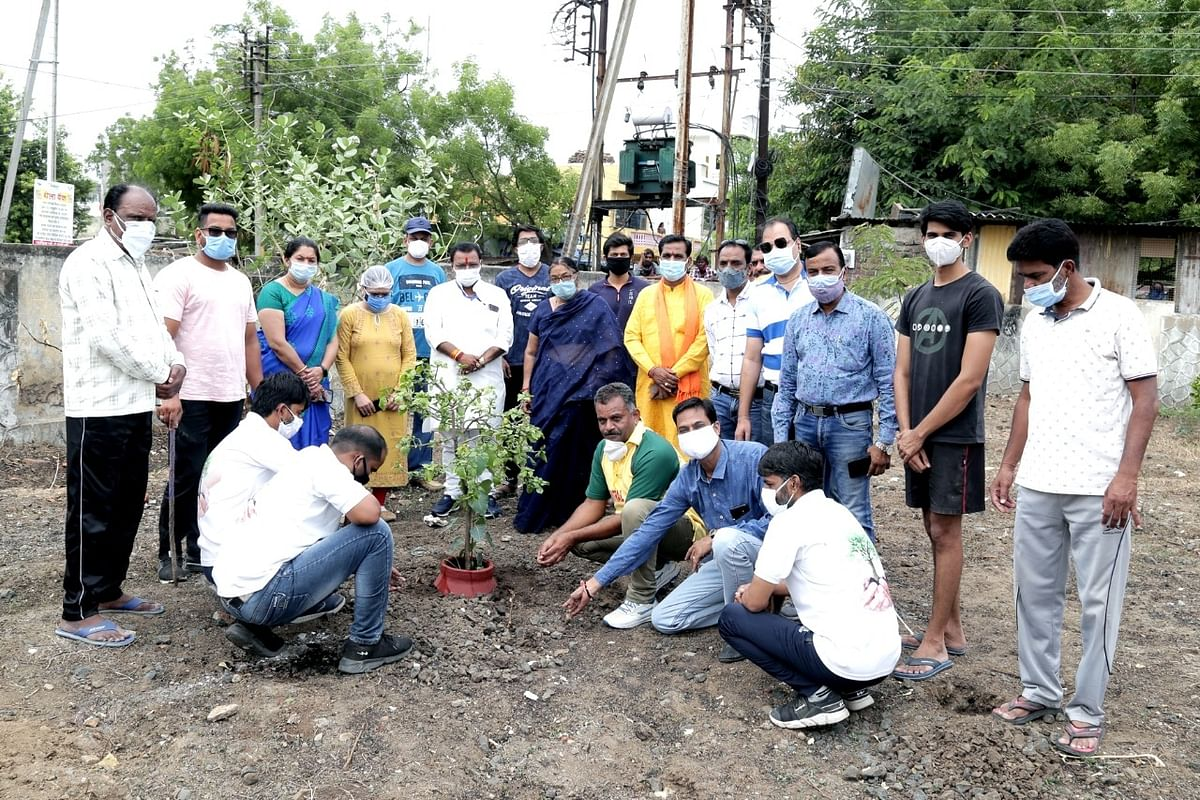 World Environment Day: Mission Paryavaran to plant 5K saplings in Ratlam district