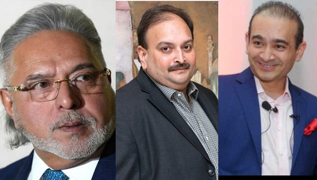 Tale of fugitive businessmen: Here's how much Vijay Mallya, Mehul Choksi, Nirav Modi owe India and why