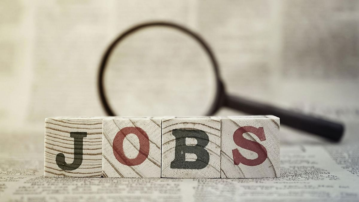 The job crisis remains the elephant in the room whose presence no one wants to acknowledge, writes P N Vijay