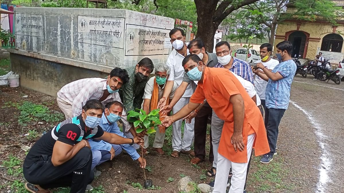 Sapling planted in vaccination centre premises