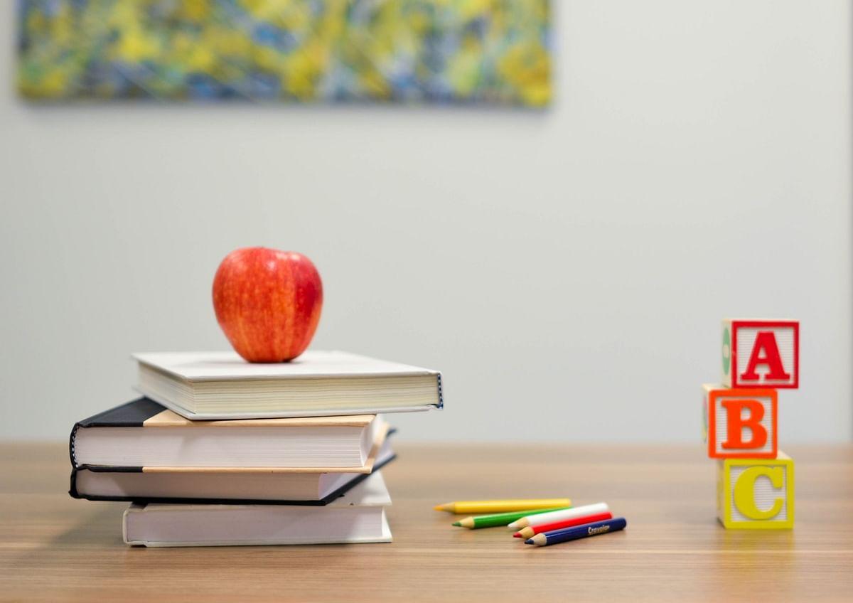 Maharashtra NGO opens free school for trans people in Vasai