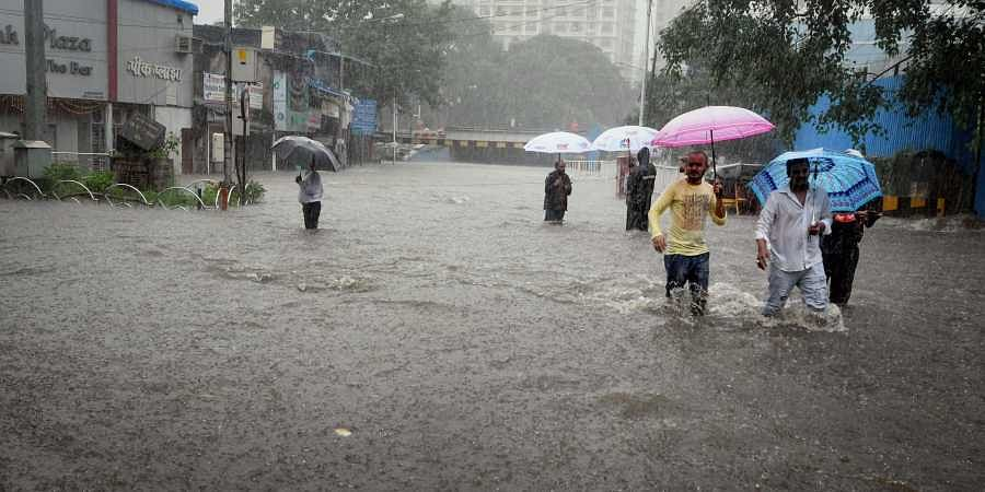 FPJ explains: BMC warns of spike in Leptospirosis cases; know its symptoms and prevention here