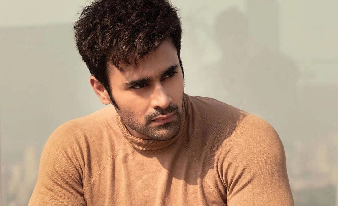 'I am still numb': Pearl V Puri, out on bail, breaks silence on 'ghastly' rape allegations