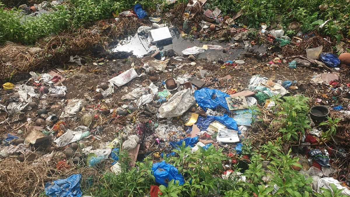 Mumbai: After spending crores, Powai lake lies in a state of neglect