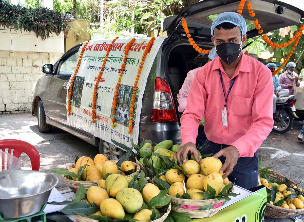 Bhopal: 'Aam Mahotsav' inaugurated at regional NABARD office