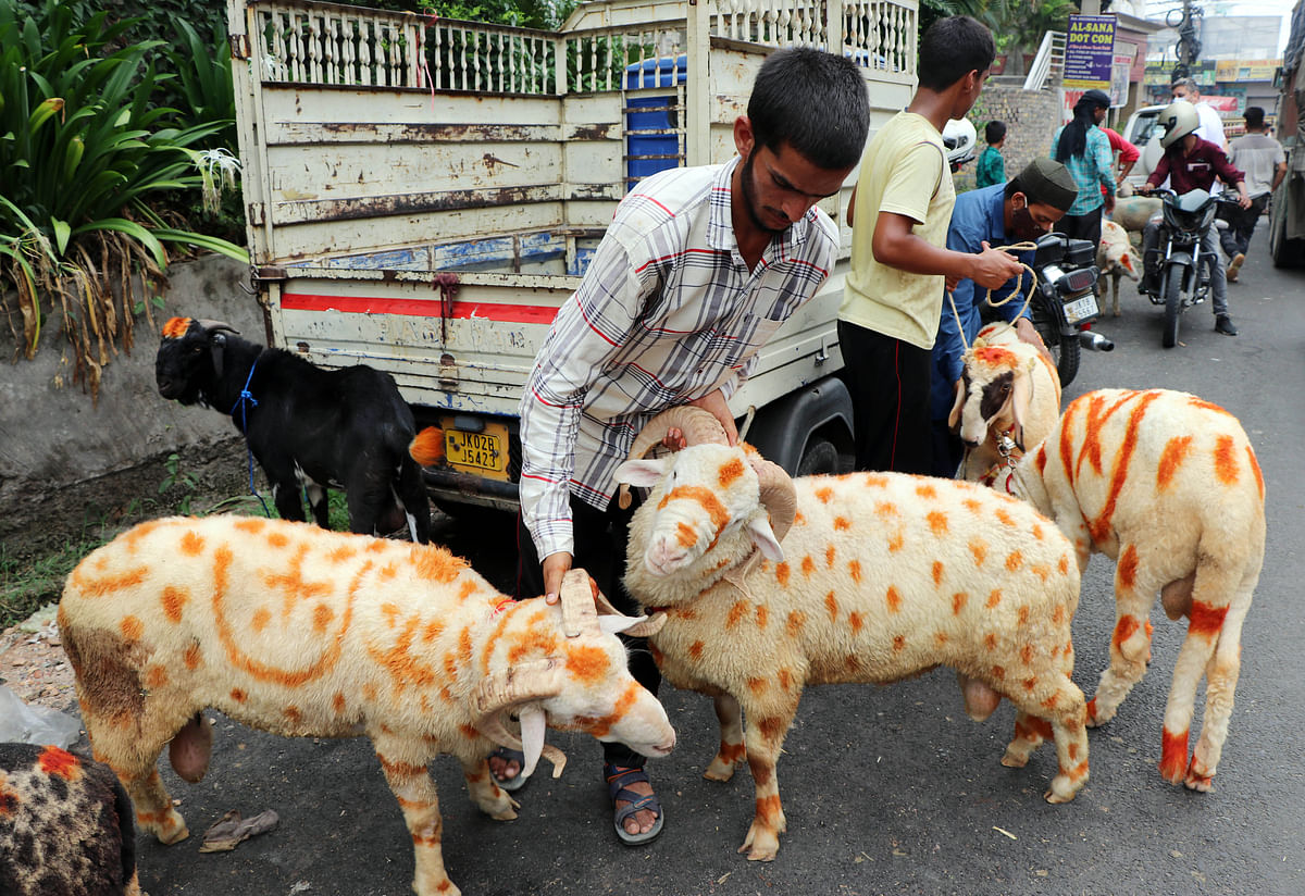 People buy sheep at a market ahead of the upcoming Eid-al-Adha festival, in Jammu on Sunday.