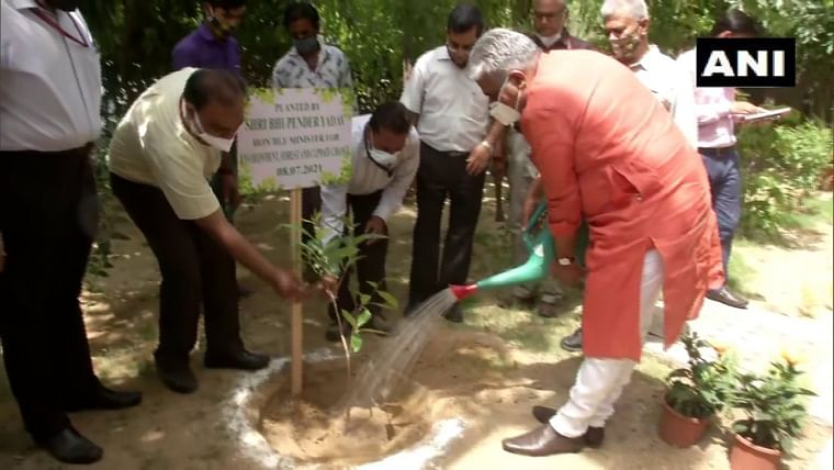 Sapling before charge: BJP leader Bhupendra Yadav takes over as Minister of Environment and Labour