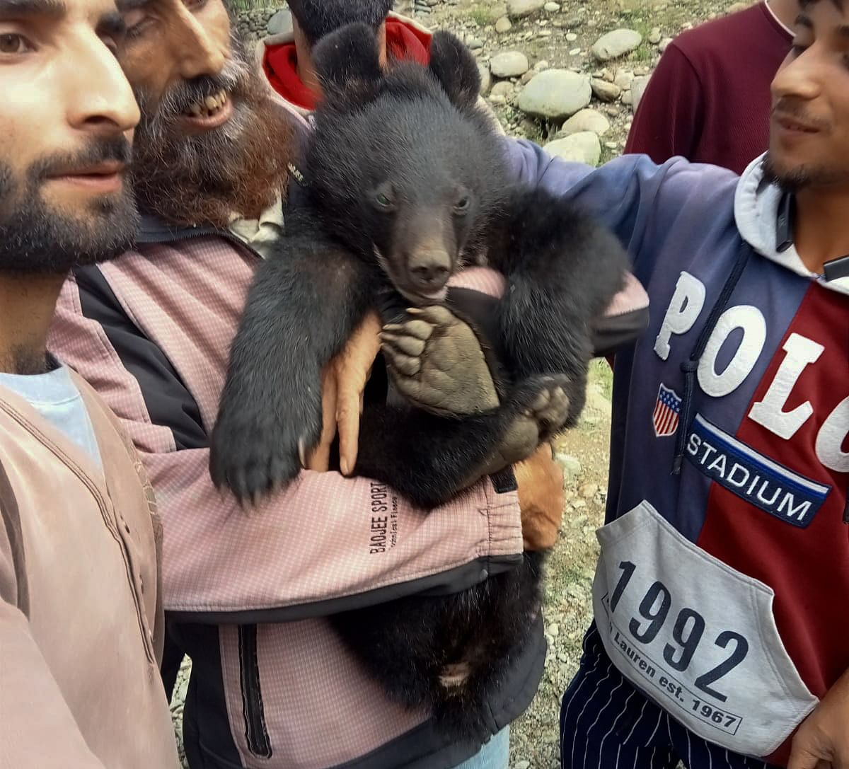 Locals carry the cub who strayed into northern Kashmir's Baramulla District on July 13, 2021.