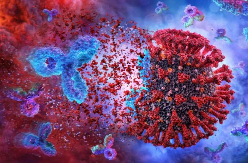 Covid antibodies persist at least 9 months after infection: Study