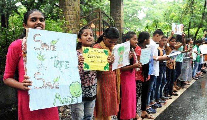 Aarey protests: Maharashtra DGP told to submit report on withdrawal of cases against protesters