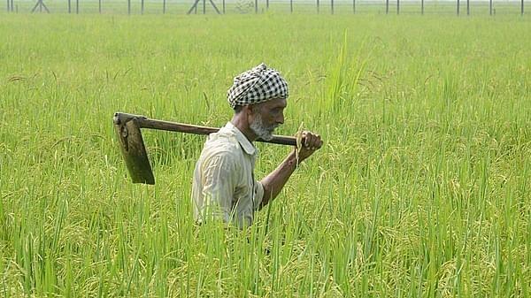 Maharashtra Govt tables 3 farm bills to counter Central laws