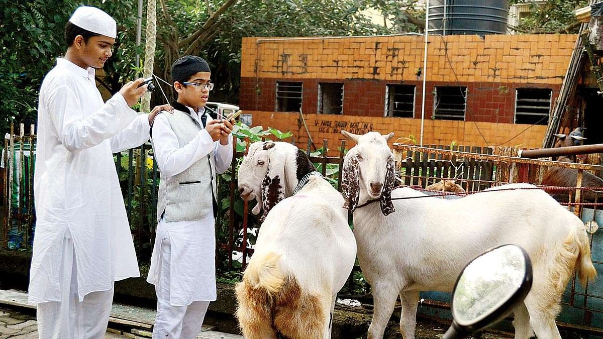 'Inappropriate': IMA condemns Kerala govt's decision to ease COVID restrictions on Bakri Eid
