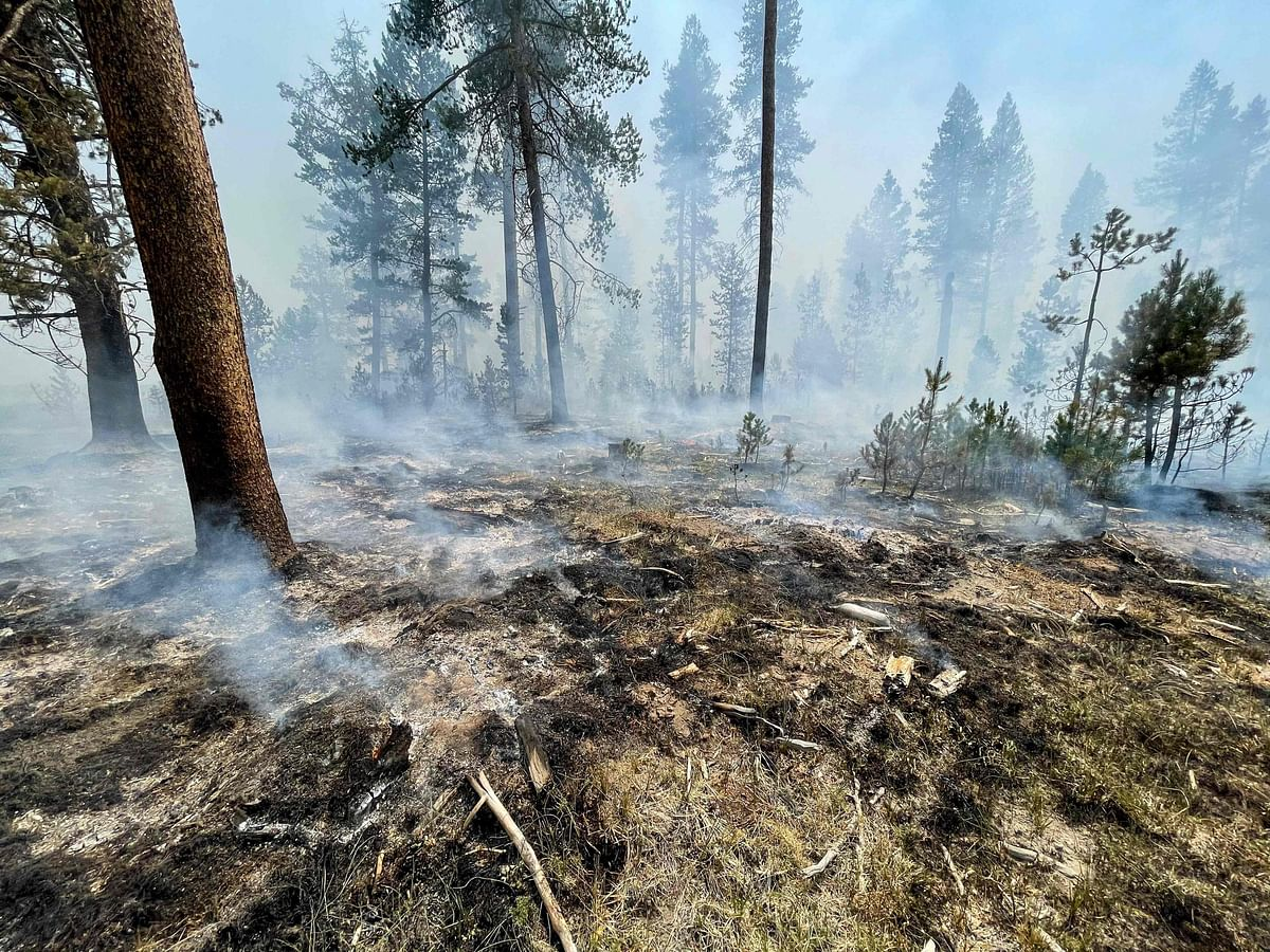 United States: Oregon wildfire burns area nearly the size of Los Angeles