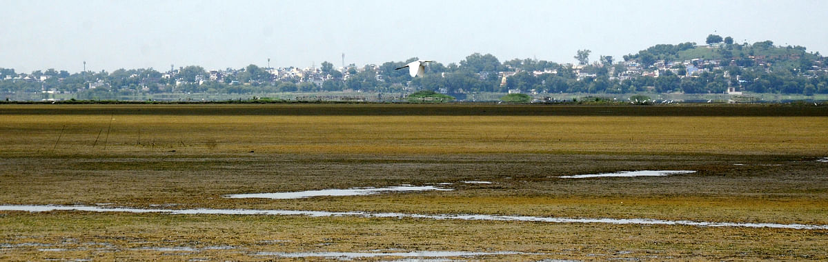 Depleting water level in Bhopal Upper Lake