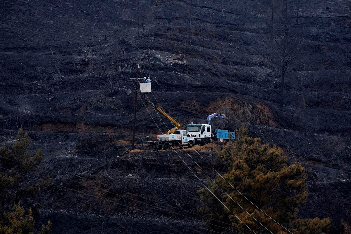 Cyprus forest fire that killed 4 now under control
