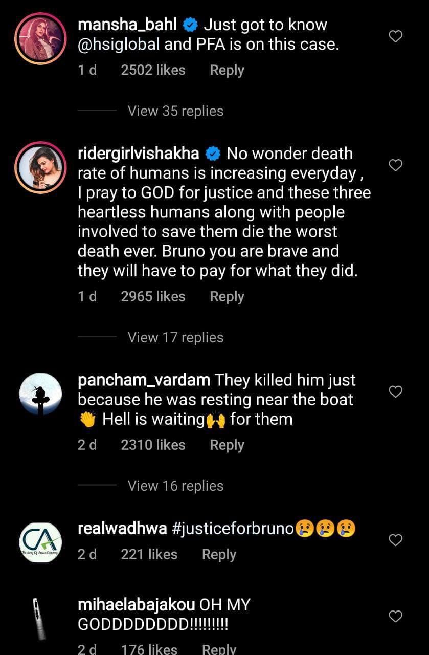#JusticeforBruno: Viral video shows men beating dog brutally, hanging him from fish hook; netizens enraged