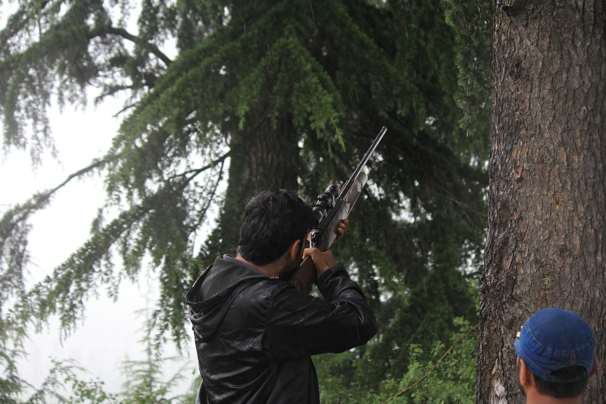 After a three-hour-long search operation, officials from the Wildlife Department found a bear and its cubs and tranquilised them after the animals strayed into the Dardpora village in northern Kashmir's Baramulla district on July 13, 2021.