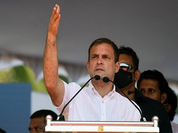 Madhya Pradesh well collapse: Rahul Gandhi asks Congress workers to help out in rescue work