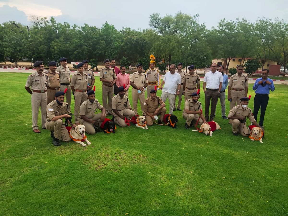 The six sniffers dogs comprised of three males and three females retired after a successful service term of 10 years in the dog squad of CISF at Jaipur airport.