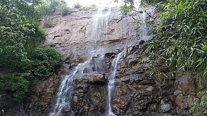 Weekend gone wrong! Over 110 fined for visiting waterfalls in Navi Mumbai