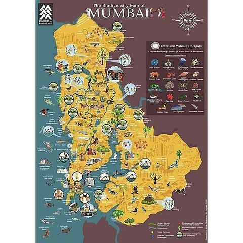 The Map was Illustrated by well-known cartoonist, Rohan Chakravarty