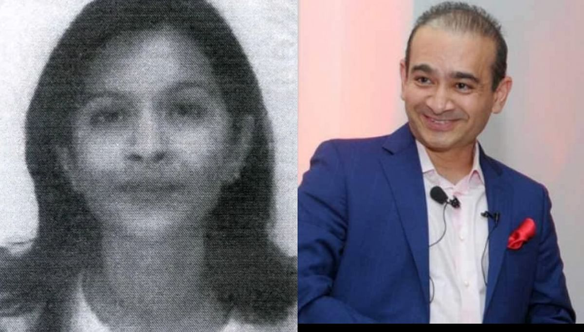 Who is Purvi Modi Mehta? Fugitive diamantaire Nirav Modi's sister who remitted Rs 17 cr to ED