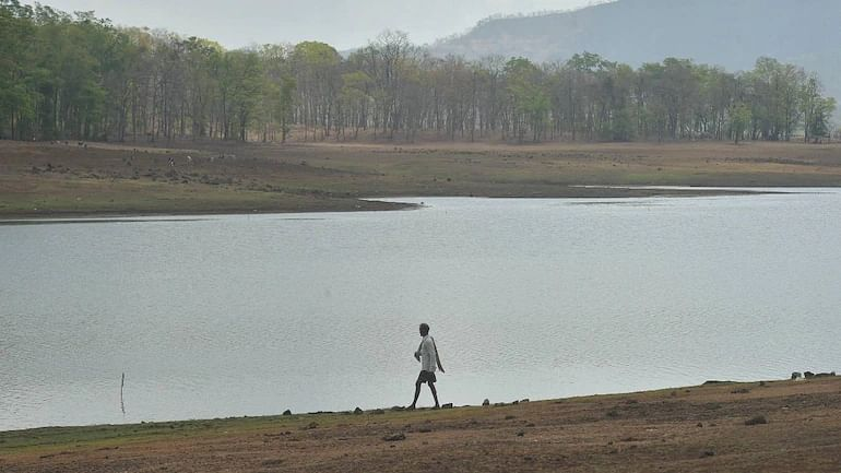 Mumbai: Click here for water level in city's seven lakes as issued by BMC on August 3