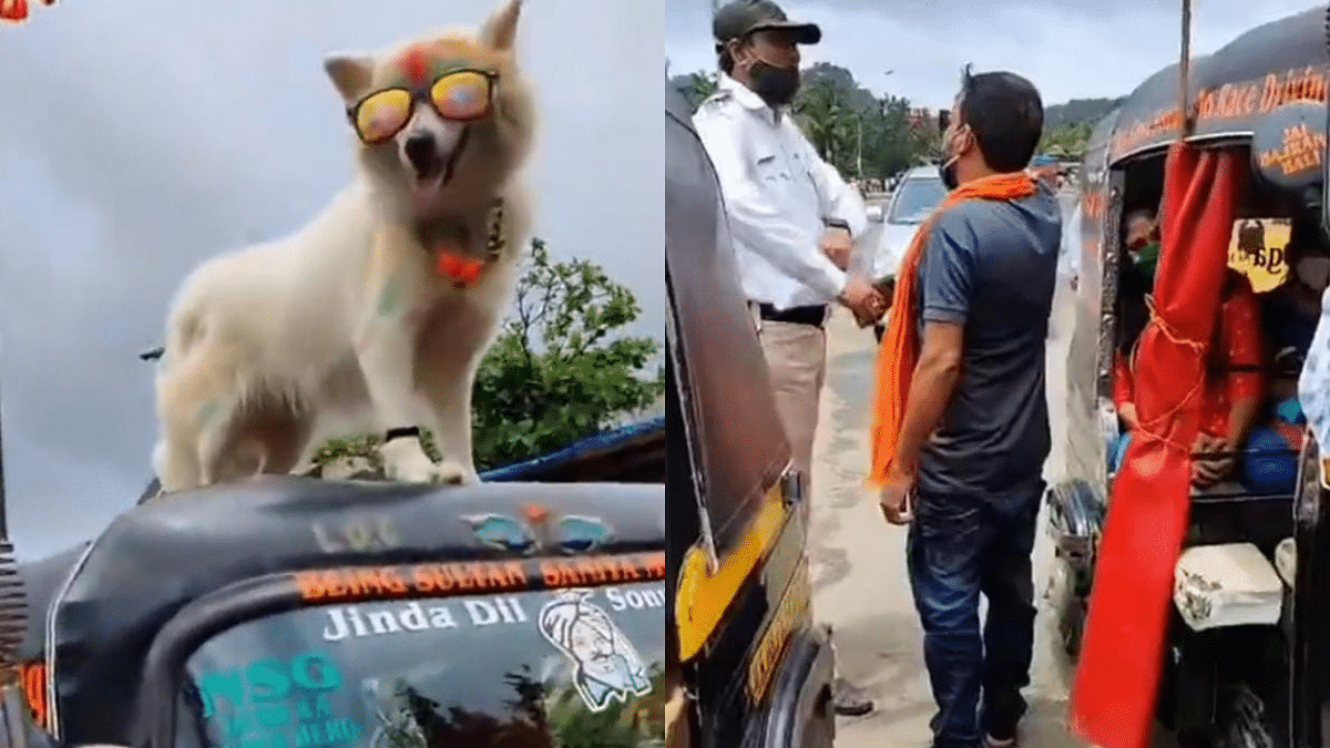 Watch: Woman calls out man driving rickshaw with dog on roof in viral video; netizens furious