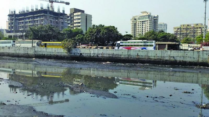 FPJ Special: From rivers to sewers - Journey of Mumbai's four rivers
