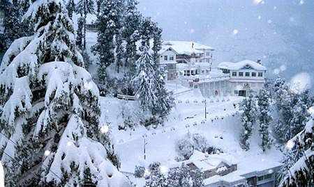 More than 500 jaundice cases in Shimla reported
