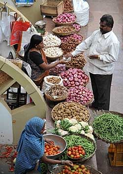 Indore: District admn imposes stock limit on onion