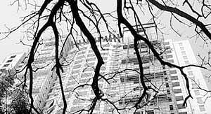 Mumbai: Consumer body penalizes society, builder for allotting wrong flat