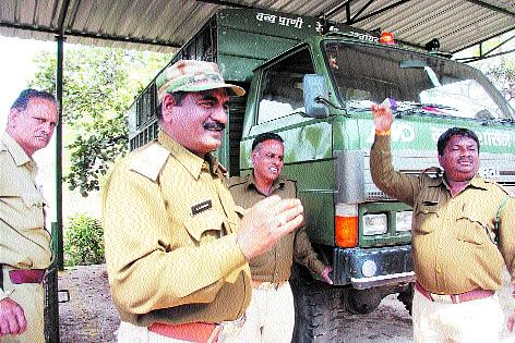 Monkey menace: Rescue team ill-equipped