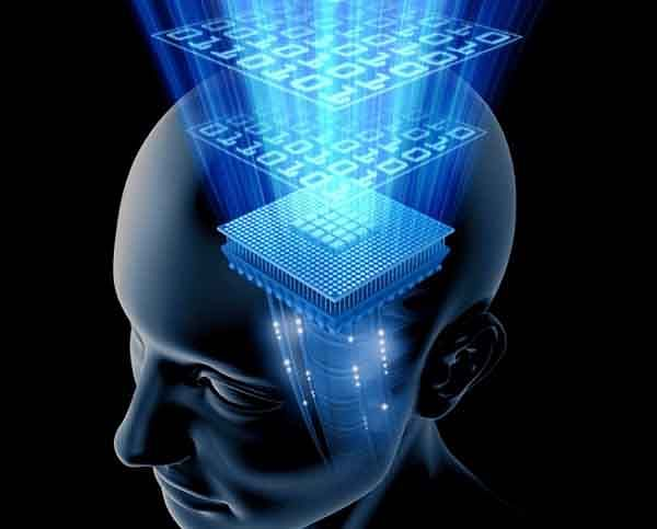 Brains use standard code to  speak same emotional language