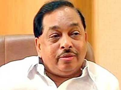 Rane to spearhead party poll drive