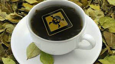 Your cup of tea could be toxic