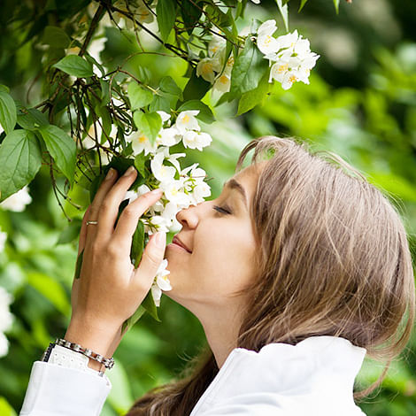 Decoded: How you sniff that jasmine smell