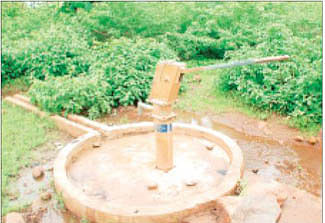 37-year-old tribal woman dies after consuming contaminated water