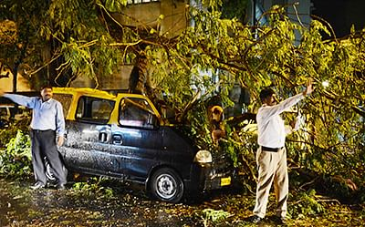 A taxi came under the tree that fell at Teen Basti area in Walkeshwar Road after heavy rains on Tuesday