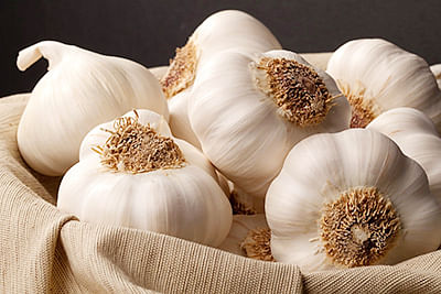 MP: Man stripped, thrashed for stealing garlic at wholesale market