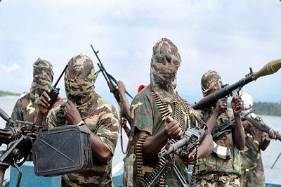 Boko Haram attack kills seven in NE Nigeria village: locals