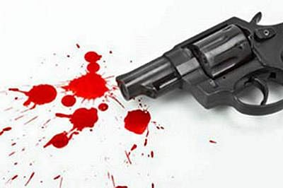 Two Indian-origin brothers shot dead in South Africa