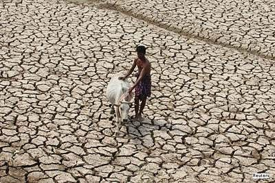 Central teams to monitor drought situation