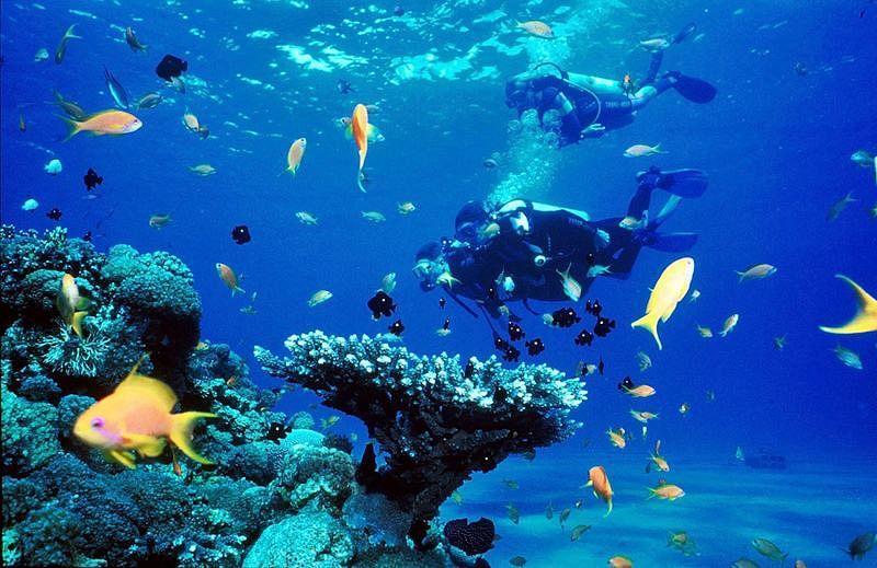 Enjoy snorkeling at Bangaram.<br />Picture Credits: Flicker