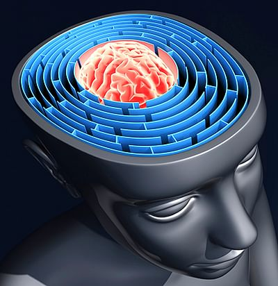 3D-printed  'bench-top' brain  to be a reality soon