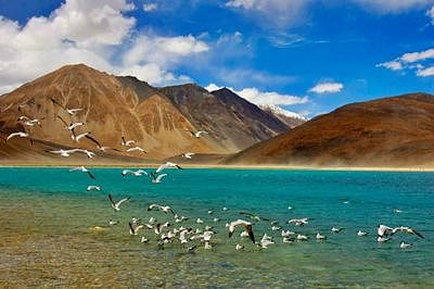 Explore the enchanting lakes of Ladakh