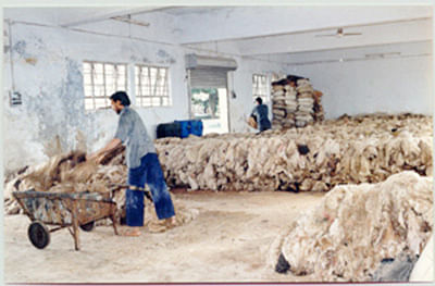 BJP, Sena differ over renovation of Deonar abattoir