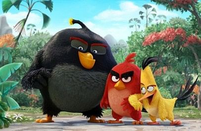 After 'The Jungle Book' censors give 'Angry Birds' UA certificate