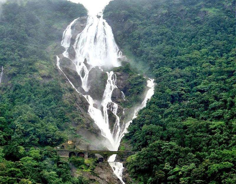 Dudhsagar Waterfalls<br />Picture credits: www.vistanature.com